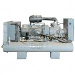 Винтовой компрессор с ресивером Dali DL-6.0/8GS (прямой привод)
